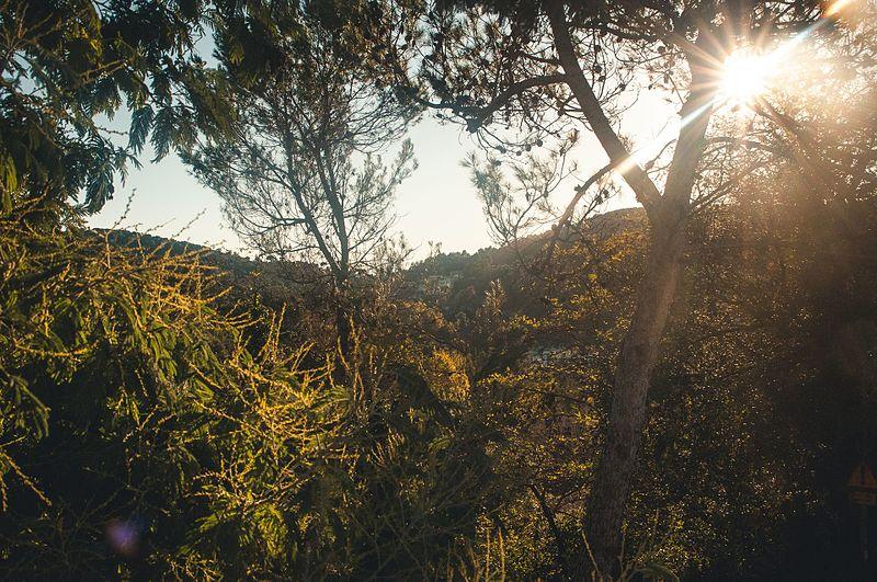 La Sierra de Collserola